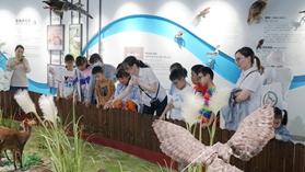 孩子们了解湿地公园动植物.jpg