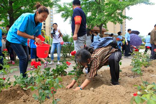 活动现场居民一起动手种花.jpg