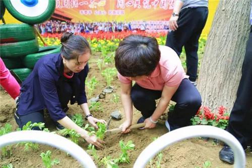 八南社区举办民族花园种植活动6_副本.jpg