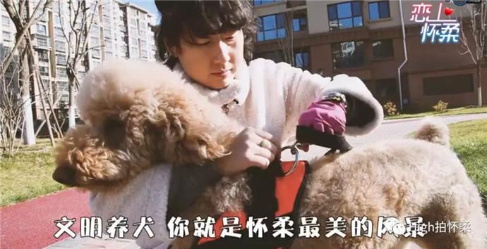 文明养犬_副本.jpg