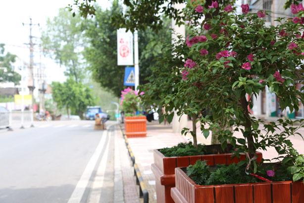 出门见绿抬头见花 长寿龙河镇居民出门就像逛公园