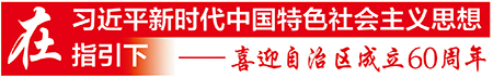 """南向北联东融西拓——习主席发表《携手推进""""一带一路""""建设》主旨演讲一年来的广西实践"""