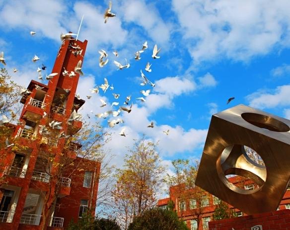 方圆、钟楼、白鸽飞翔