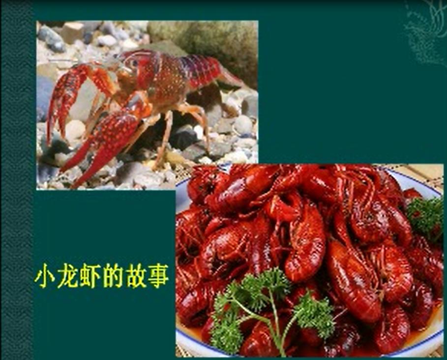 虾壳.png