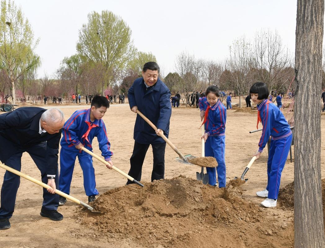 习近平:发扬中华民族爱树植树护树好传统 推动国土绿化<br>不断取得实实在在的成效