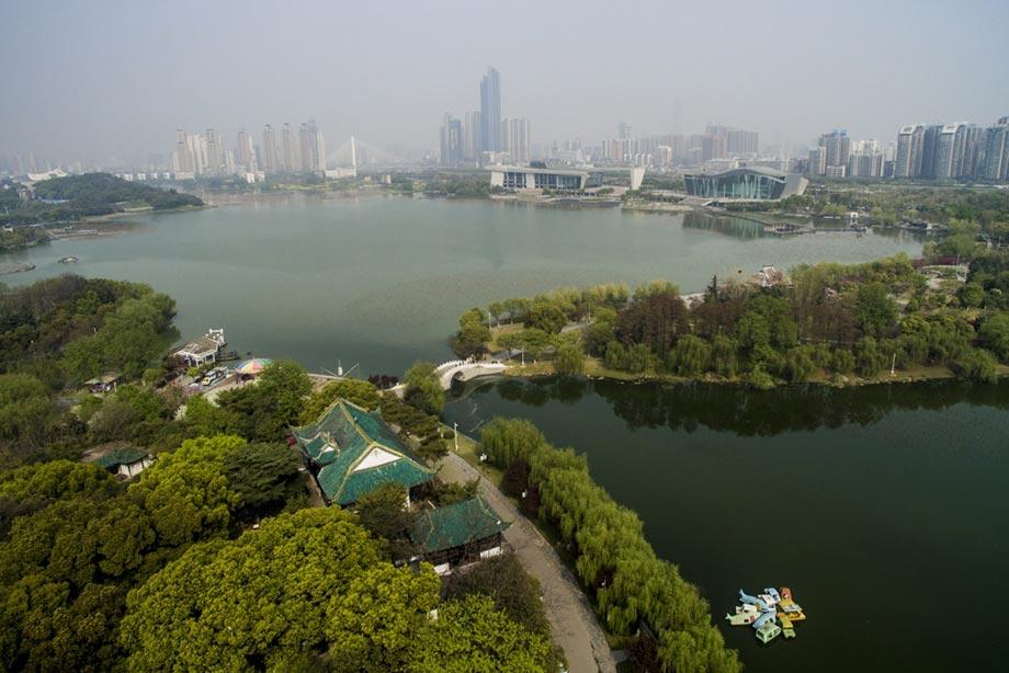 武汉民间湖长:守护河湖很欣慰(点赞中国・我这五年)