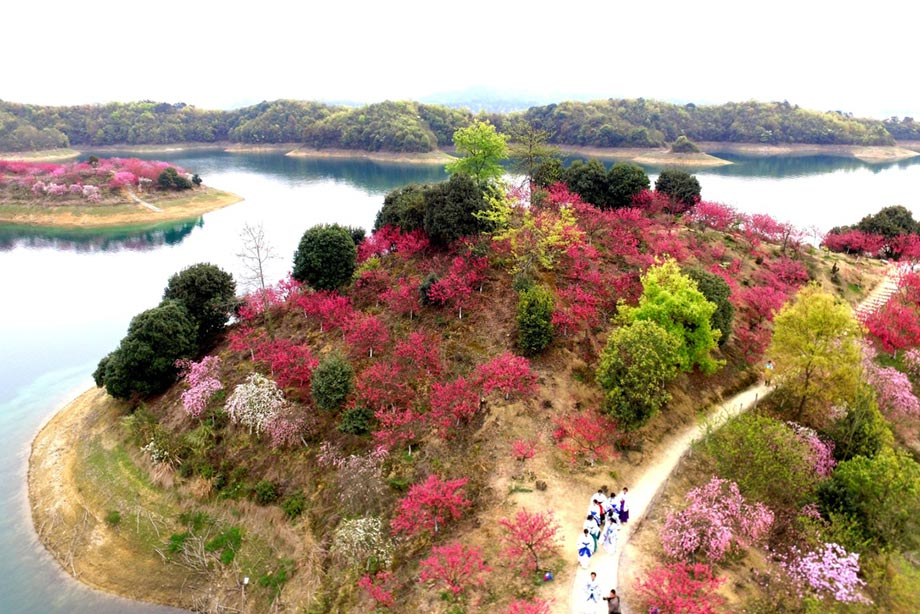 游客在江西省九江市武宁县庐山西海花源谷景区赏花