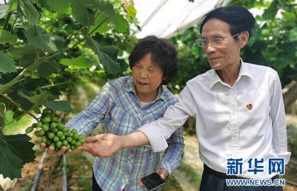 朱有志湖南 驻村11年,带富一个村