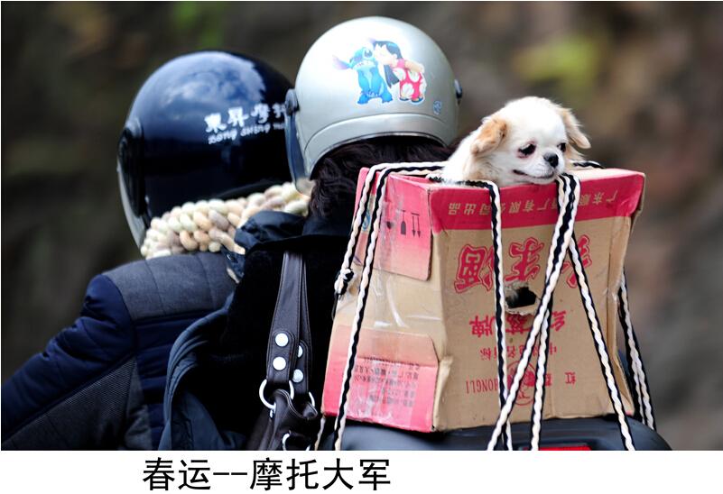 故乡的风景---中国文明网