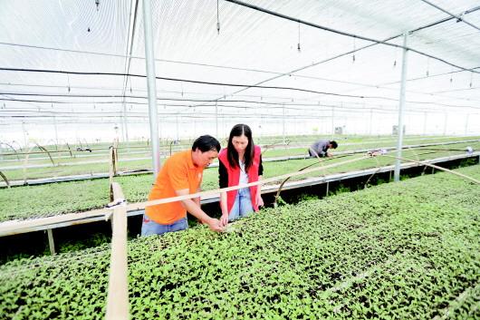 贵州龙里:新时代文明实践中心让志愿服务温暖山乡