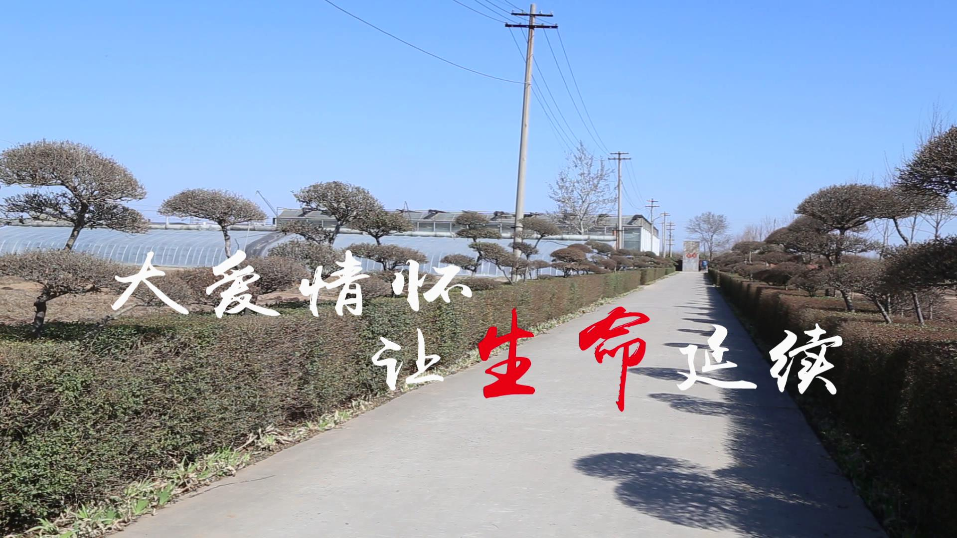 河南省安阳市 刘庆军[00_00_16][20190318-144751].jpg