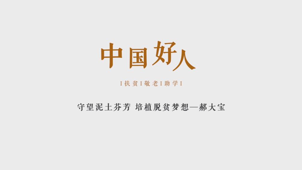 中國好人郝大寶微視頻[20200205-115146].png