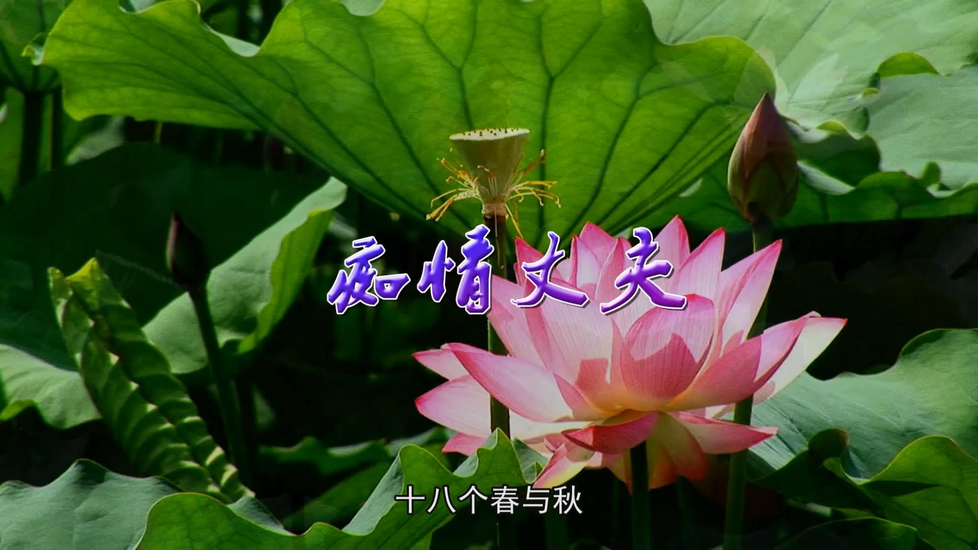a痴情丈夫输出1无职员表[00_01_58][20181116-150706-0].JPG