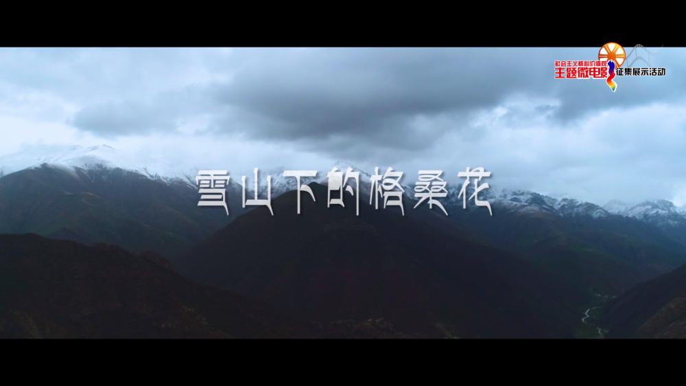雪山下的格桑花[00_00_06][20210127-200140].png