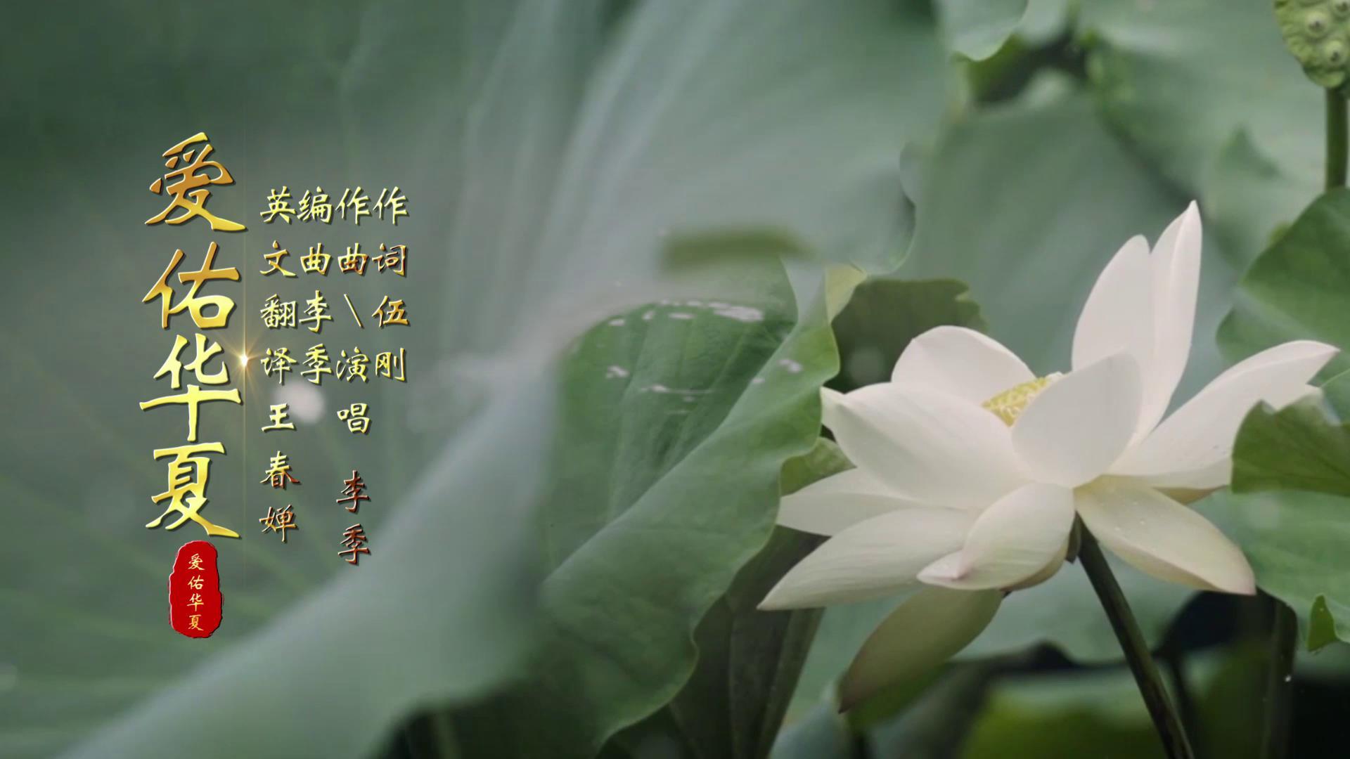 爱佑华夏 MV包装版2.0[封面图].jpg