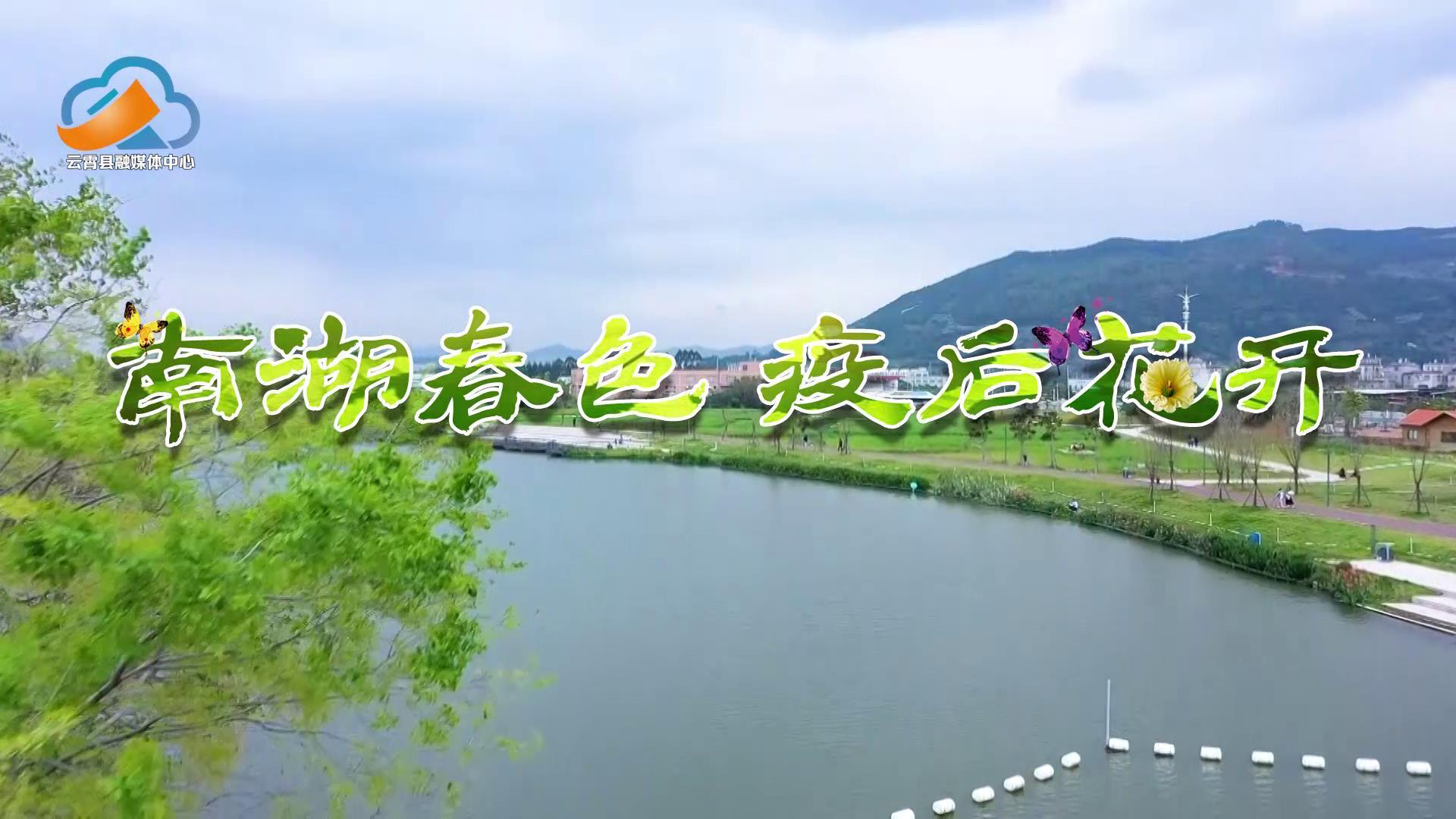 南湖春色  疫后花开[封面图].jpg