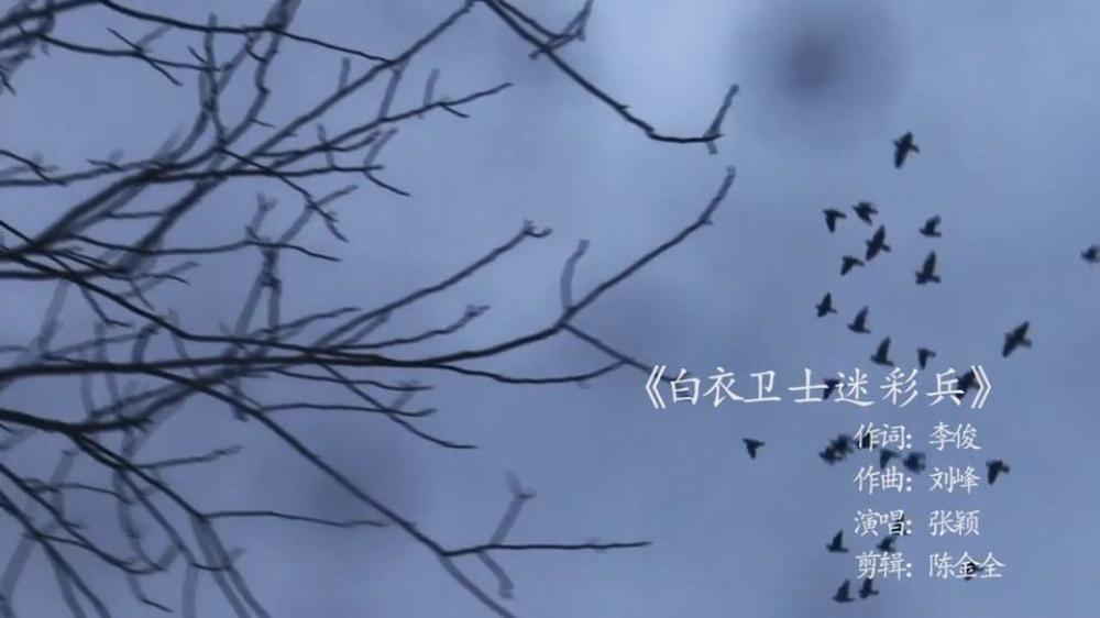 白衣卫士迷彩兵[00_00_06][20200417-120027].jpg