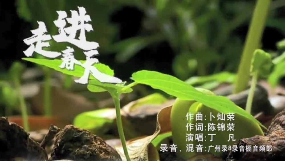 """以艺战""""疫"""" 粤曲《走进春天》[00_00_05][20200429-105345].jpg"""