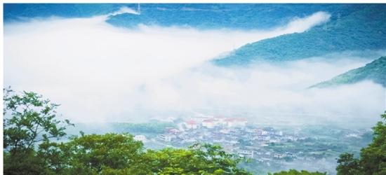 宁海县桑洲镇南岭村油菜花节.图片来源:浙江日报